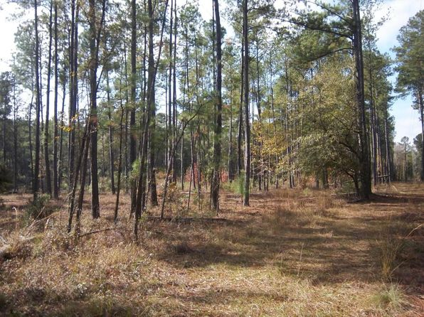 null bed null bath Vacant Land at 0 Salem Rd Dorchester, SC, 29437 is for sale at 26k - 1 of 14