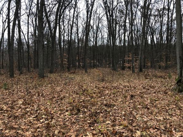 null bed null bath Vacant Land at 2342 N CONSERVATIVE XING WHITE CLOUD, MI, 49349 is for sale at 13k - 1 of 2