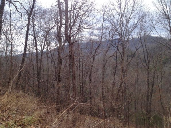 null bed null bath Vacant Land at  Glory Mtn Bryson City, NC, 28713 is for sale at 17k - 1 of 4