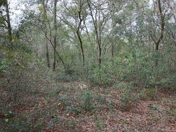 null bed null bath Vacant Land at 00 County Road 315 Keystone Heights, FL, 32656 is for sale at 175k - 1 of 4