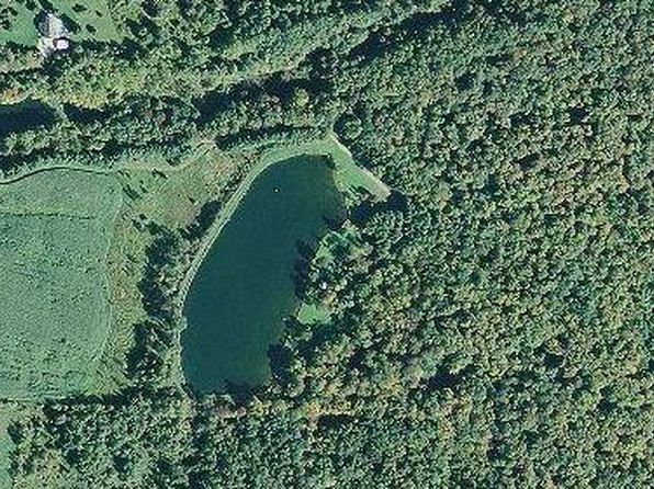 null bed null bath Vacant Land at 0 Crump Rd Colden, NY, 14033 is for sale at 450k - 1 of 25