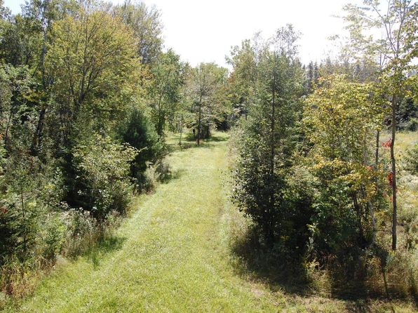 null bed null bath Vacant Land at  M-65 Whittemore, MI, 48770 is for sale at 249k - 1 of 104
