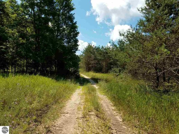 null bed null bath Vacant Land at 230 Acres Erwin Rd Copemish, MI, 49625 is for sale at 400k - 1 of 22