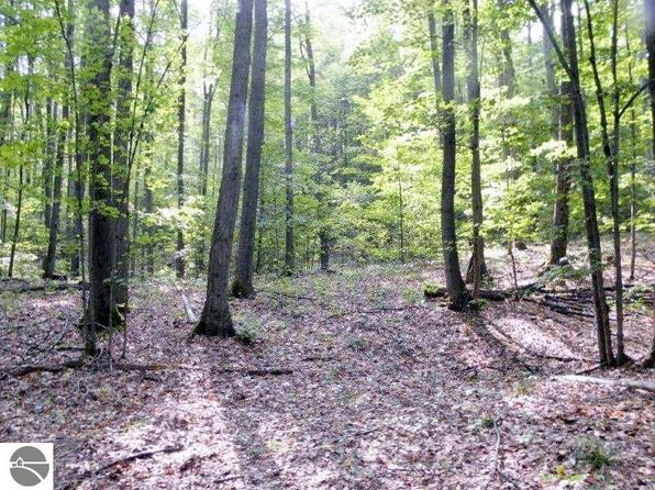 null bed null bath Vacant Land at 40 Acres Dinger Rd Thompsonville, MI, 49683 is for sale at 118k - 1 of 16