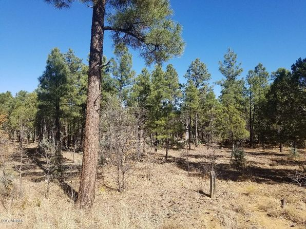 null bed null bath Vacant Land at 3360 Blazingstar Rd Lakeside, AZ, 85929 is for sale at 69k - 1 of 11