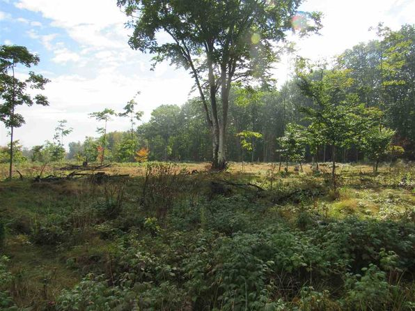 null bed null bath Vacant Land at  Tbd Ff Rd.--30a Nahma, MI, 49835 is for sale at 25k - 1 of 12