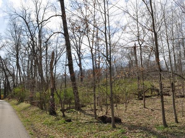 null bed null bath Vacant Land at  Canyon Road Unit Lot 1 Hebron, OH, 43025 is for sale at 90k - 1 of 3