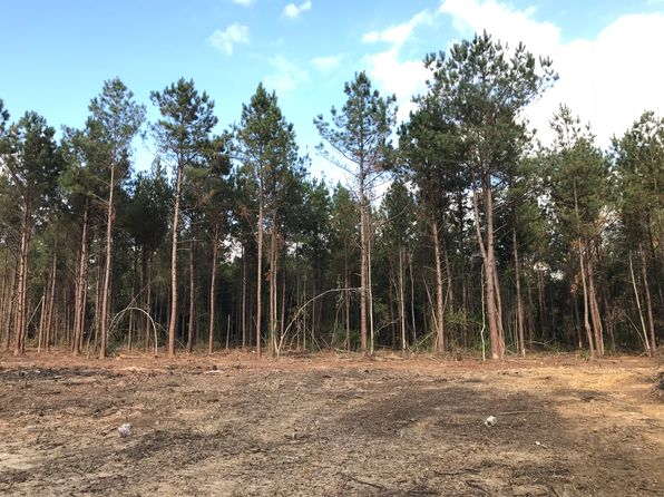null bed null bath Vacant Land at NO Address Amite, LA, 70422 is for sale at 23k - 1 of 10