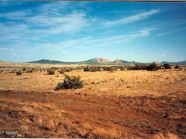 null bed null bath Vacant Land at  Antelope Rdg Concho, AZ, 85924 is for sale at 19k - 1 of 2