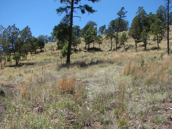 null bed null bath Vacant Land at 113 Ranier Rd Ruidoso, NM, 88345 is for sale at 22k - 1 of 4