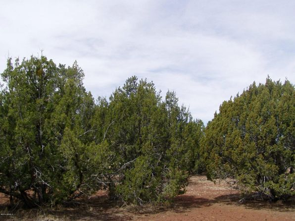 null bed null bath Vacant Land at N Ranch Rd Show Low, AZ, 85901 is for sale at 40k - 1 of 5
