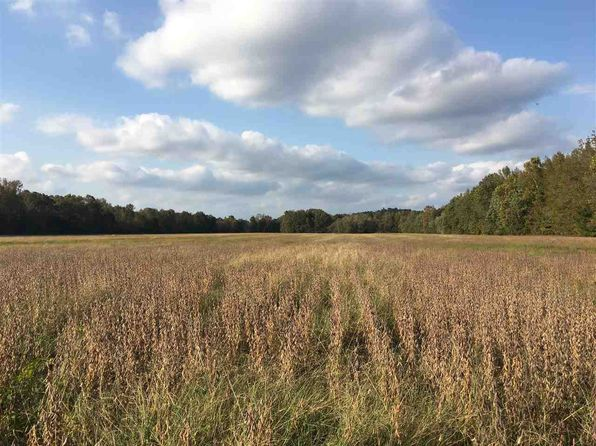 null bed null bath Vacant Land at  Hwy W Williamsville, MO, 63967 is for sale at 622k - 1 of 24