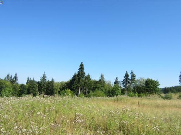 null bed null bath Vacant Land at 20 Silver Rdg Castle Rock, WA, 98611 is for sale at 63k - 1 of 4