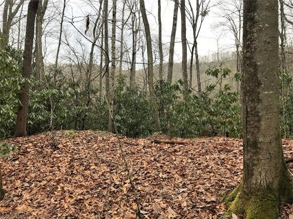 null bed null bath Vacant Land at  Tbd Skye Dr Pisgah Forest, NC, 28768 is for sale at 45k - 1 of 8