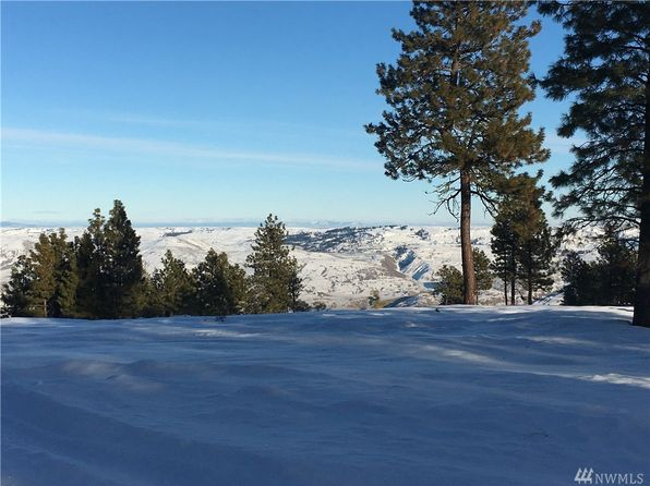 null bed null bath Vacant Land at 0 Blazing Star Ln Chelan, WA, 98816 is for sale at 95k - google static map