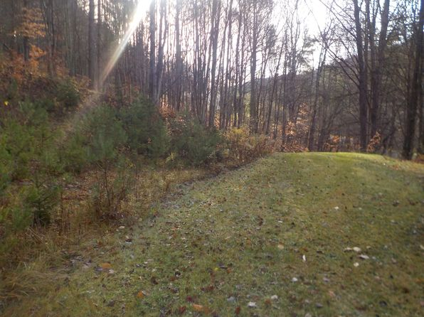 null bed null bath Vacant Land at 460 RUSSELL RD WALTON, NY, 13856 is for sale at 20k - 1 of 11
