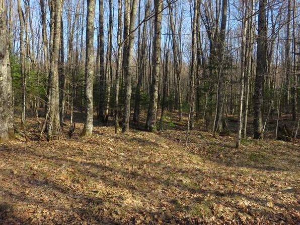 null bed null bath Vacant Land at  Wildcat Rd Presque Isle, WI, 54557 is for sale at 25k - 1 of 10