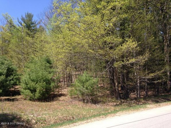 null bed null bath Vacant Land at 817 ZALTZ RD THURMAN, NY, 12885 is for sale at 29k - 1 of 8