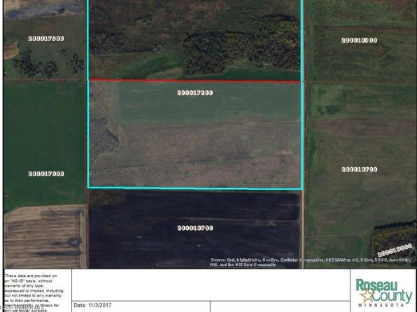 null bed null bath Vacant Land at  Tbd Co. Rd. 139 Rd Badger, MN, 56714 is for sale at 72k - 1 of 3