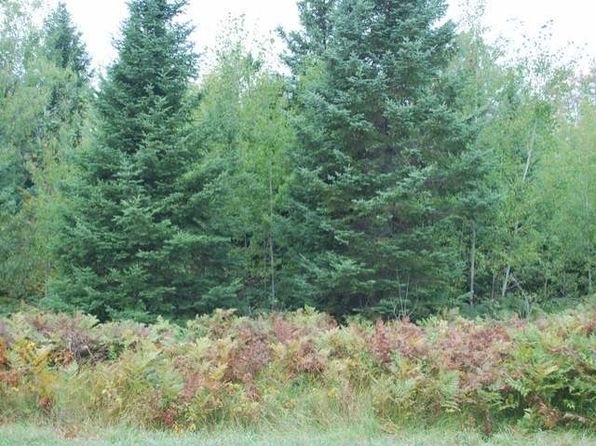 null bed null bath Vacant Land at  Near Old 8 Rd Crandon, WI, 54520 is for sale at 11k - google static map