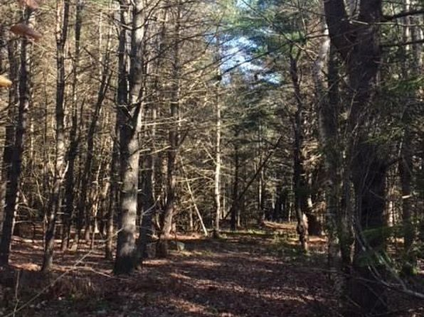 null bed null bath Vacant Land at 0 Horn Dr Kenduskeag, ME, 04450 is for sale at 75k - 1 of 3