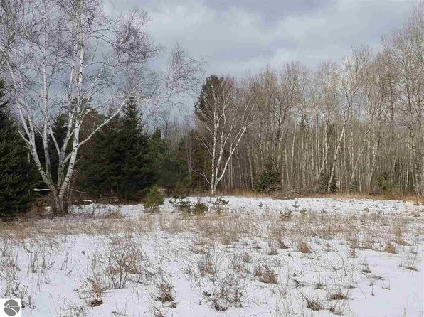 null bed null bath Vacant Land at 00 E 46 Rd Cadillac, MI, 49601 is for sale at 36k - 1 of 11