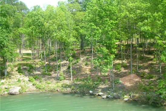 null bed null bath Vacant Land at  Lot # 48 Osprev Ave Arley, AL, 35541 is for sale at 136k - google static map