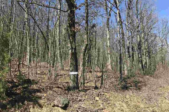 null bed null bath Vacant Land at Undisclosed Address Concord, AR, 72523 is for sale at 17k - google static map