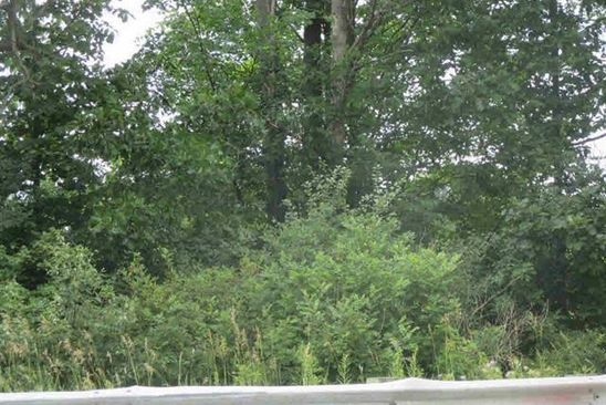 null bed null bath Vacant Land at 0 State Rd Atlas Twp, MI, 48438 is for sale at 24k - google static map