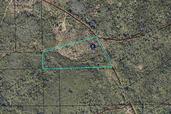 null bed null bath Vacant Land at SW Hike Lake Rd Madison, FL, 32340 is for sale at 60k - google static map