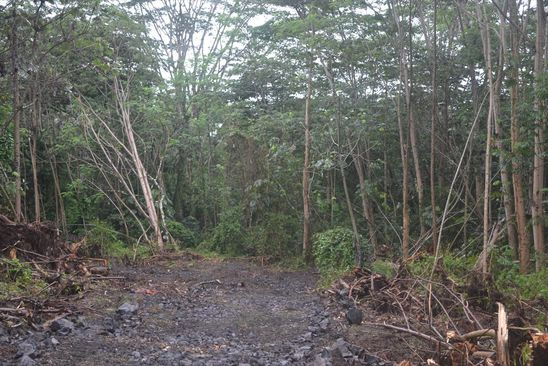 null bed null bath Vacant Land at  Government Beach Rd Keaau, HI, 96749 is for sale at 200k - google static map