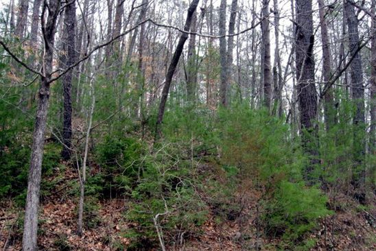 null bed null bath Vacant Land at Undisclosed Address Sylva, NC, 28713 is for sale at 60k - google static map