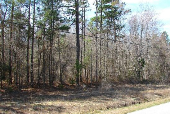 null bed null bath Vacant Land at 5002 SW 166th Loop Ocala, FL, 34473 is for sale at 6k - google static map
