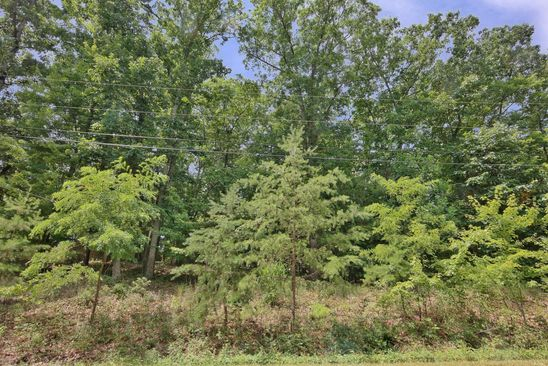 null bed null bath Vacant Land at 0 Pin Oak Dr Blue Ridge, VA, 24064 is for sale at 49k - google static map
