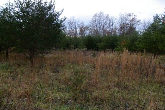 null bed null bath Vacant Land at  Hawks Bluff Palamino Way Spencer, TN, 38585 is for sale at 4k - google static map