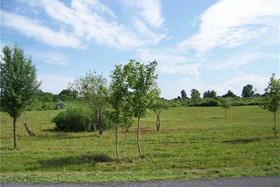 0 bed null bath Vacant Land at 0 Parker Rd Fayette, NY, 13148 is for sale at 30k - google static map