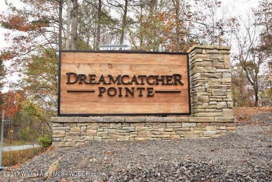 null bed null bath Vacant Land at  Dreamcatcher Cir Arley, AL, 35541 is for sale at 29k - google static map