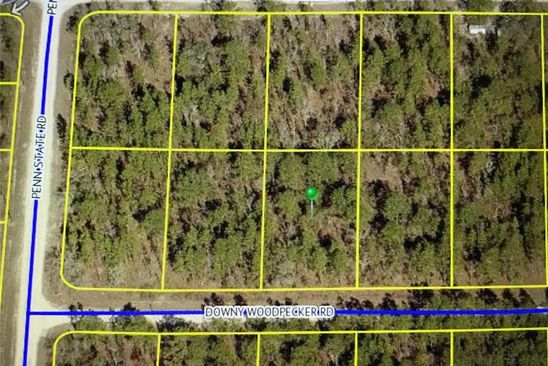 null bed null bath Vacant Land at 0 Downy Woodpecker Rd Weeki Wachee, FL, 34606 is for sale at 13k - google static map