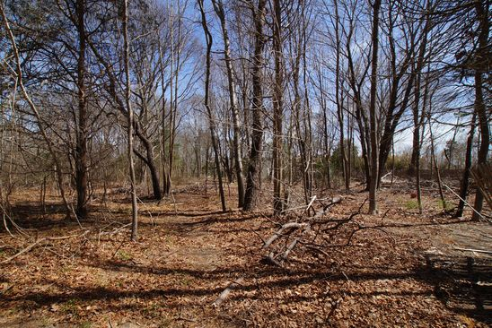 0 bed null bath Vacant Land at 99 Ponquogue Ave Hampton Bays, NY, 11946 is for sale at 185k - google static map