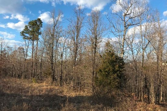 null bed null bath Vacant Land at 0 Rabbit Run Poplar Bluff, MO, 63901 is for sale at 21k - google static map