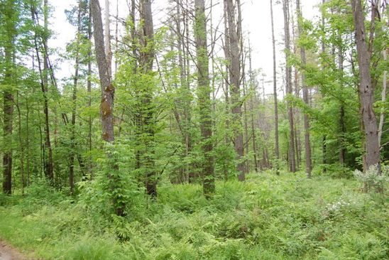 null bed null bath Vacant Land at 0 Carver Rd Willsboro, NY, 12996 is for sale at 37k - google static map