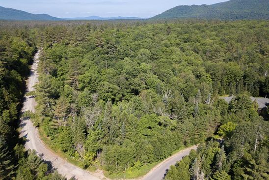 null bed null bath Vacant Land at 167 Algonquin Dr Lake Placid, NY, 12946 is for sale at 160k - google static map