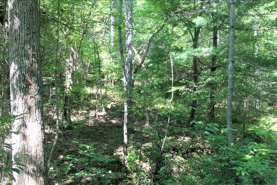 null bed null bath Vacant Land at  Bruce mtn Rd Blairsville, GA, 30512 is for sale at 26k - google static map