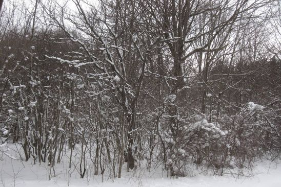 null bed null bath Vacant Land at 5 Ac Louis Ridge Rd Herkimer, NY, 13416 is for sale at 15k - google static map