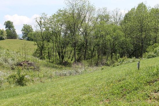 0 bed null bath Vacant Land at  Bidwell St Franklin, NC, 28734 is for sale at 35k - google static map
