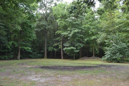 null bed null bath Vacant Land at  MCCORMICK SWAMP RD PRINCESS ANNE, MD, 21853 is for sale at 20k - google static map