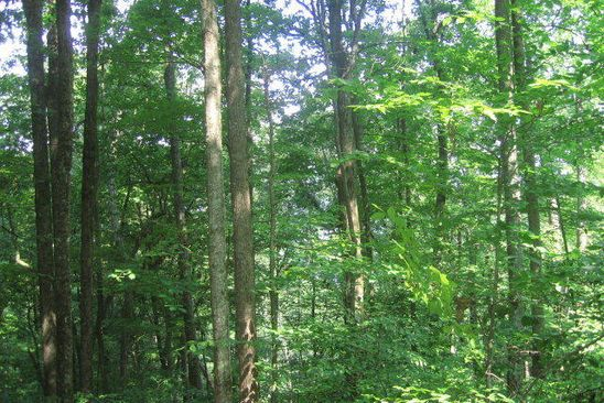null bed null bath Vacant Land at  Poston Drive 3 Monterey, TN, 38574 is for sale at 18k - google static map