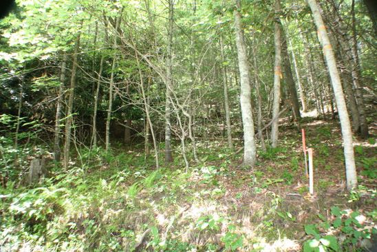 null bed null bath Vacant Land at 54 Lake Shore Dr Topton, NC, 28781 is for sale at 30k - google static map