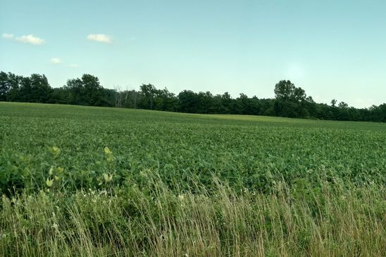 null bed null bath Vacant Land at 0 Johnson Marysville, OH, 43040 is for sale at 1.10m - google static map