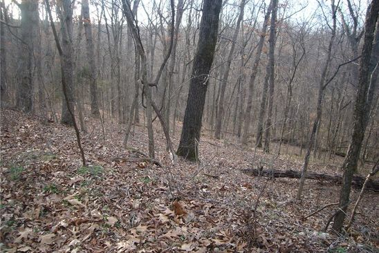 null bed null bath Vacant Land at  Ridge Rd Garfield, AR, 72732 is for sale at 6k - google static map
